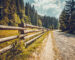 Autumn nature landscape. Empty road with wooden fence in pine tree forest. Trekking in Carpathian mountains, Ukraine. Nature landscape. Travel background. Vintage toning filter.